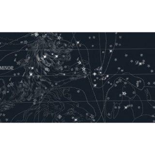 Пробковый пол CORKSTYLE ADVENTURES stars black